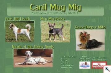 Anuário de Cães 2009